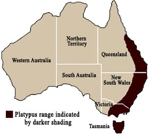 platypus location