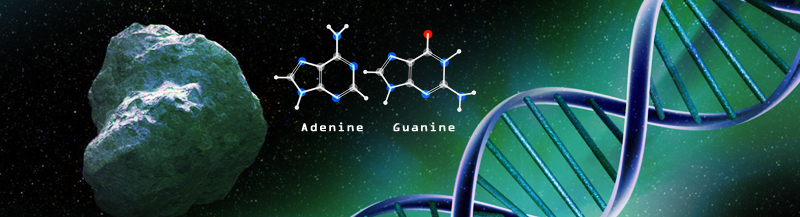 DNA Building Blocks Made in Space