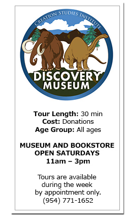 creation discovery museum hours