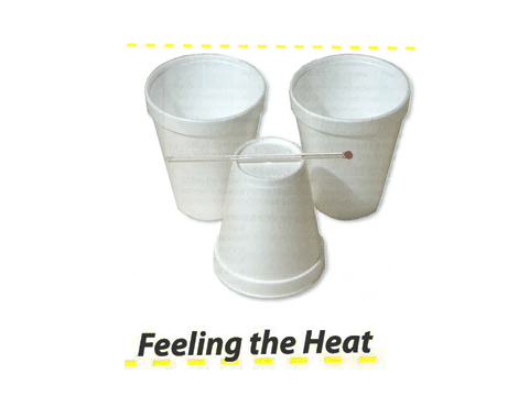 Energy: Feeling the Heat - Lesson 8