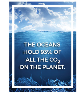 CO2 in the oceans