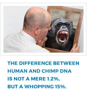 The difference between a chimp and human